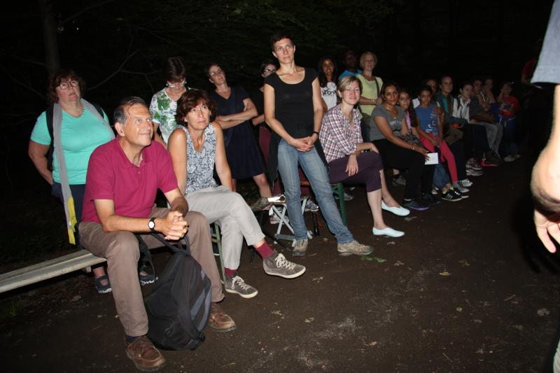 CMS Family Bat Night in Bonn
