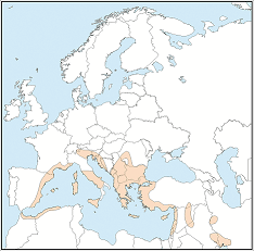 Distribution map of Myotis capaccinii