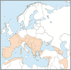 Distribution map of Myotis emarginatus