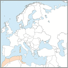 Distribution map of Myotis punicus
