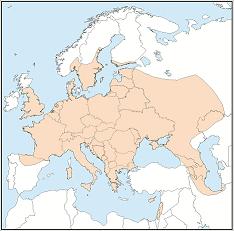Distribution map of Nyctalus noctula