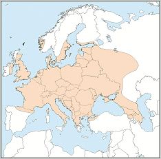 Distribution map of Pipistrellus nathusii
