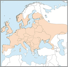 Distribution map of Plecotus auritus