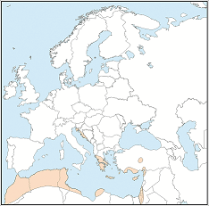 Distribution map of Plecotus kolombatovici