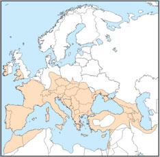 Rhinolophus hipposideros distribution map