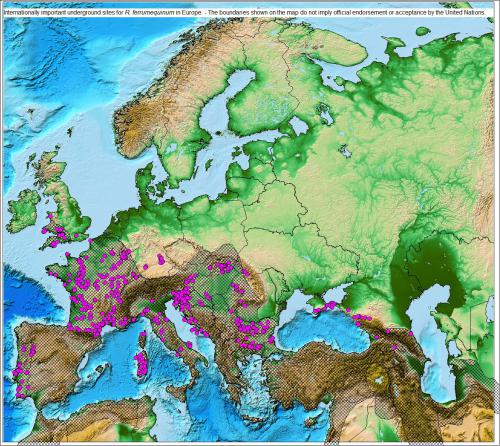 Internationally Important Underground Sites for R. ferrumequinum in Europe - The boundaries shown on the following maps do not imply official endorsement or acceptance by the United Nations.